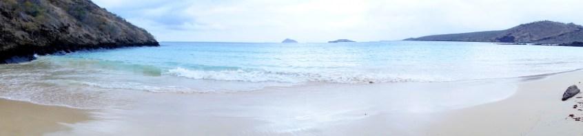 Galápagos, Floreana, Punto Cormorant, Four Sand Beach: So schön und doch nicht zum Baden geeignet, denn Stachelrochen lieben diese Strand ebenfalls und suchen im flachen Ufer nach Fressbarem wie Krustentieren und Muscheln.