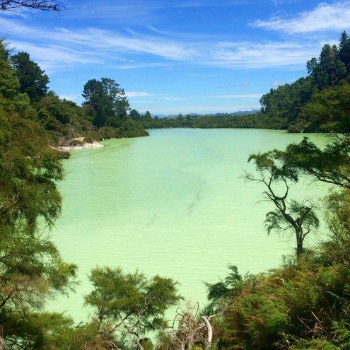 Neuseeland, Wai-O-Tapu: Lake Ngakoro