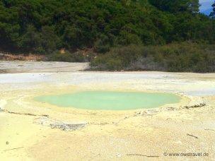 Neuseeland, Wai-O-Tapu: Kochende Wasser