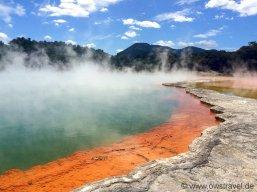 Neuseeland, Wai-O-Tapu: Der berühmte, wunderschön von der Natur eingefärbte Champagner-Pool