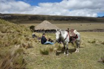 Cotopaxi Nationalpark - Reitpause