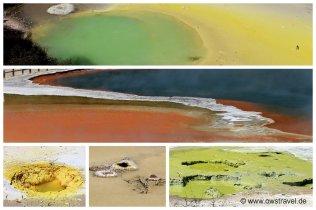 Neuseeland, Wai-O-Tapu: So bunt kann Natur sein