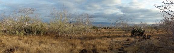 Galapagos, La Pinta, North Seymour: Beeindruckende Landschaften
