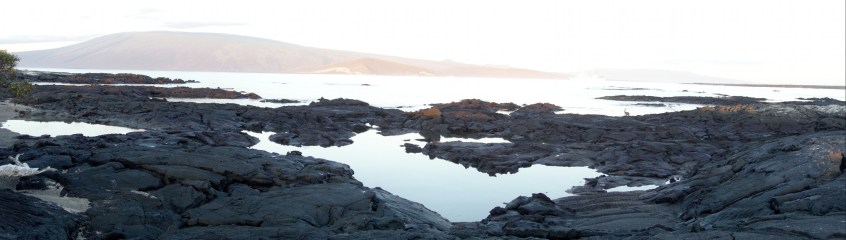 Galápagos, La Pinta, Fernandina: Blick nach Santa Isabela auf den Vulkan Darwin mit dem Punta Vinzenta Roca