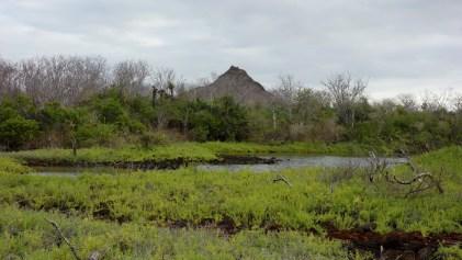 Galápagos, Santa Cruz, Cerra Dragone: Die Brackwasser-Lagune mit dem Cerro Dragone im Hintergrund