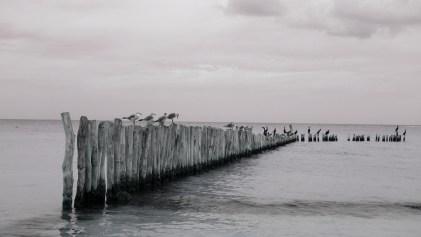 Mexico, Isla Holbox