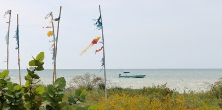 Mexico, Isla Holbox: Stilleben am Strand