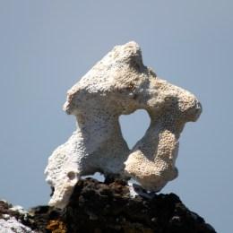 Galápagos, Santa Isabela, Los Tintoreros: Das Zeichen unserer Weltreise von der Natur geformt