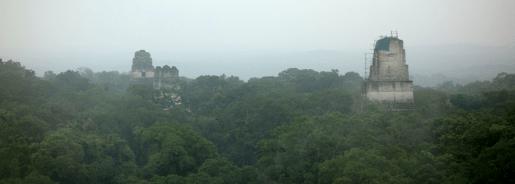 Guatemala, Tikal: Blick von Tempel 4. Von hier sieht man sich den Sonnenaufgang an, falls es Sonne gibt!
