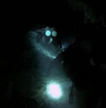 Mexiko, Tulum, Cenoten Tauchen: Immer schön einer nach dem anderen, Cenote Dos Ojos
