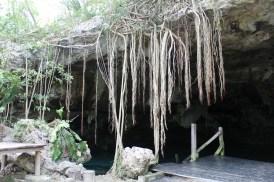 Mexiko, Tulum, Cenote Dos Ojos: Ein verwunschener Platz wie aus einem Märchen