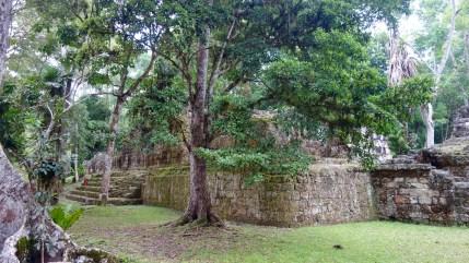 Guatemala, Tikal: Hier wissen wir leider nicht mehr genau wo das war und was es darstellt.