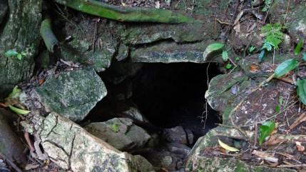 Palenque, Dschungeltour: Gut getarnt verbergen sich überall Zugänge zu Maya-Ruinen