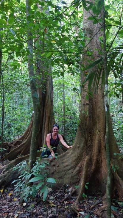Palenque, Dschungeltour: Größenverhältnisse!