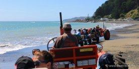Cape Kidnapper: Los geht die zünftige Fahrt mit den Traktoren