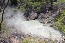 Wai-O-Tapu: See mit kochend heißem Wasser