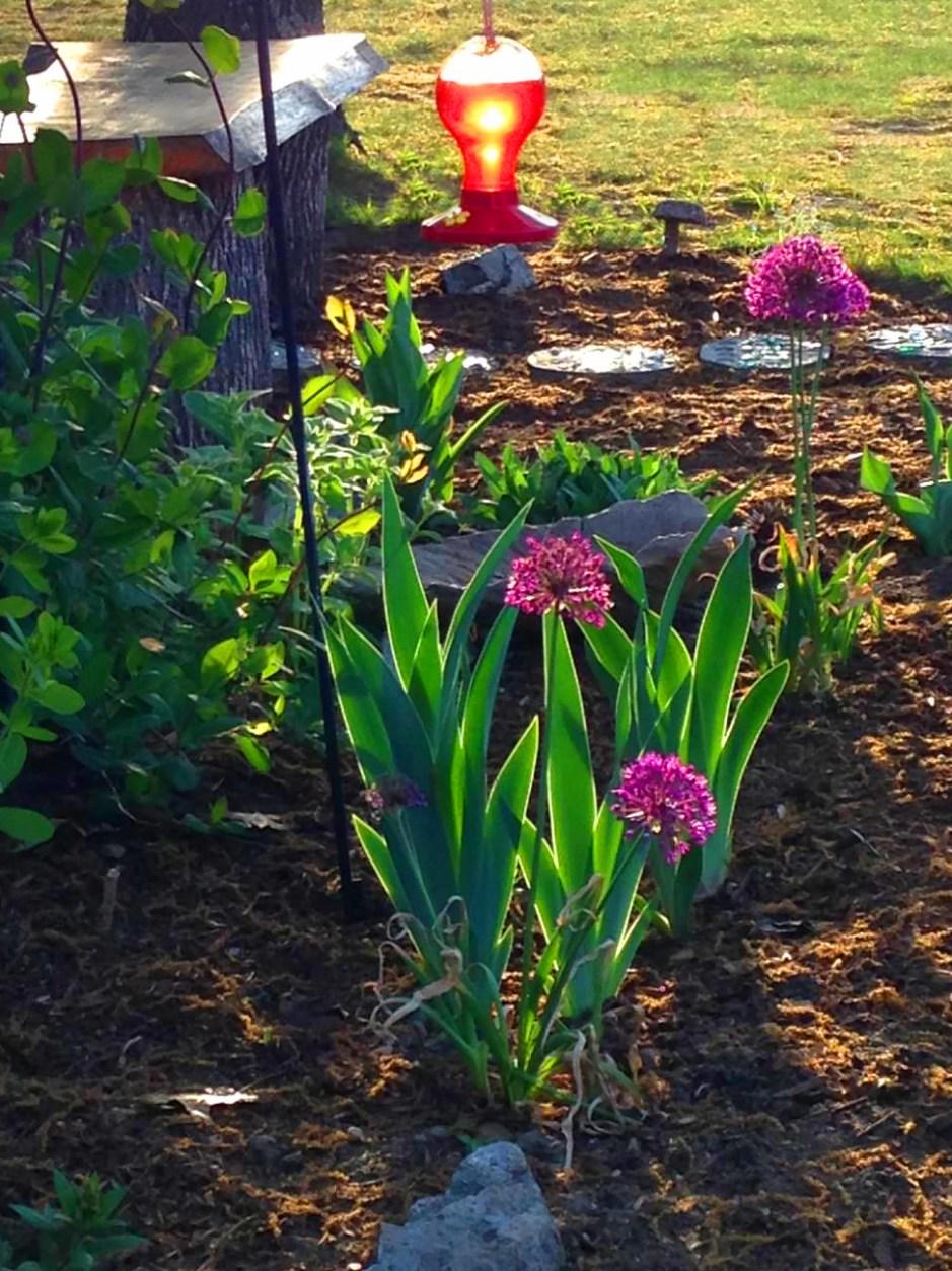 Oxbow Schoolhouse Flowerbed