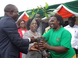 Willy Bet Providing Hass Avocado Seedlings to farmers