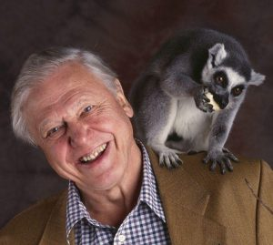 The Legendary David Attenborough