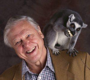 The Legendary David Attenborough