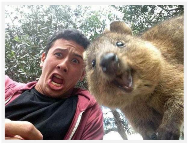 Selfie Legend #2