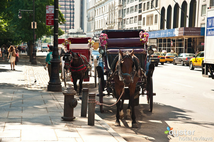 Horse carriages at the entrance of the Ritz-Carlton Central Park