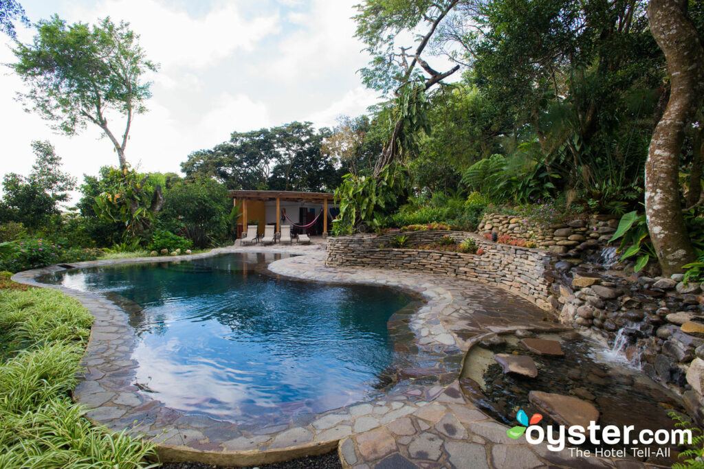 La piscina en Monteverde Lodge & Gardens / Oyster