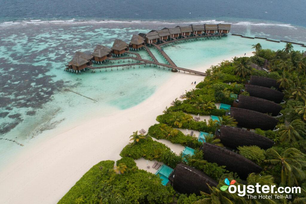 Kandolhu Maldivas / Ostra