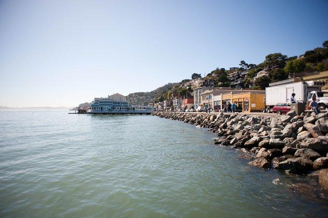 Sausalito, San Francisco / Oyster