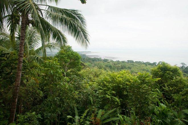 Lapa Rios Lodge & Wildlife Reserve, Costa Rica / Oyster