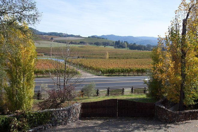 View from the Kenwood Inn and Spa in Sonoma/Oyster