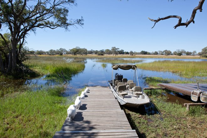 undBeyond Xaranna Okavango Delta Camp / Oyster