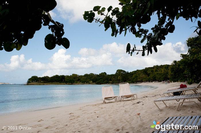 Beach at Caneel Bay, St. John, U.S. Virgin Islands