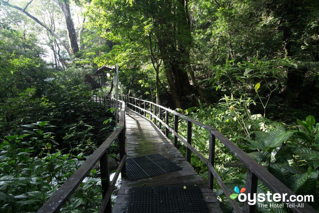 Le sorgenti termali di Buena Vista Lodge & Adventure / Oyster