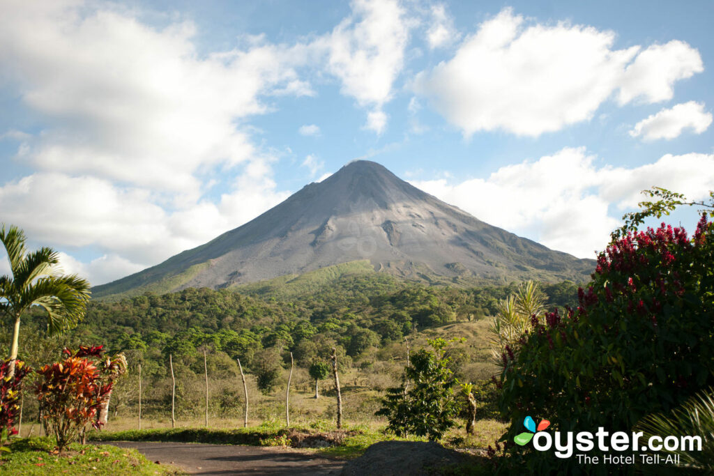 Volcan Arenal / Oyster
