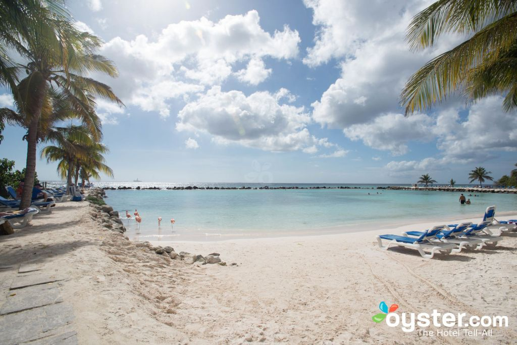 reviews of renaissance aruba resort /u0026 casino