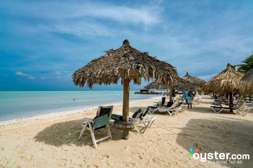 Playa en Barceló Aruba / Oyster