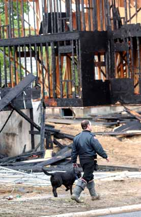 Arson Inspector and dog walkes through debris from a fire on Brutis Ave. and Kellogg St. in Oyster Bay, New York on Wednesday, May 18, 2005. The fire is believed to be arson. (Newsday photo / Michael E. Ach) ts