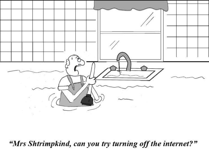A plumber asks Mrs. Shtrimpkind to turn off the Internet to stop the flood