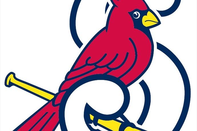 springfield cardinals_6469564600401283219
