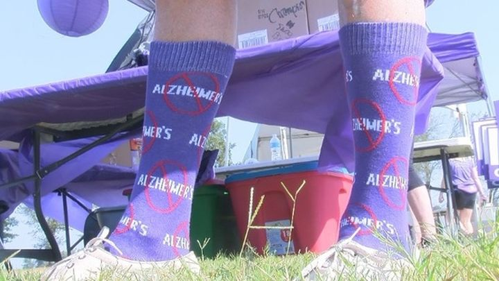 sock it to alzheimers_1505615467746.jpg