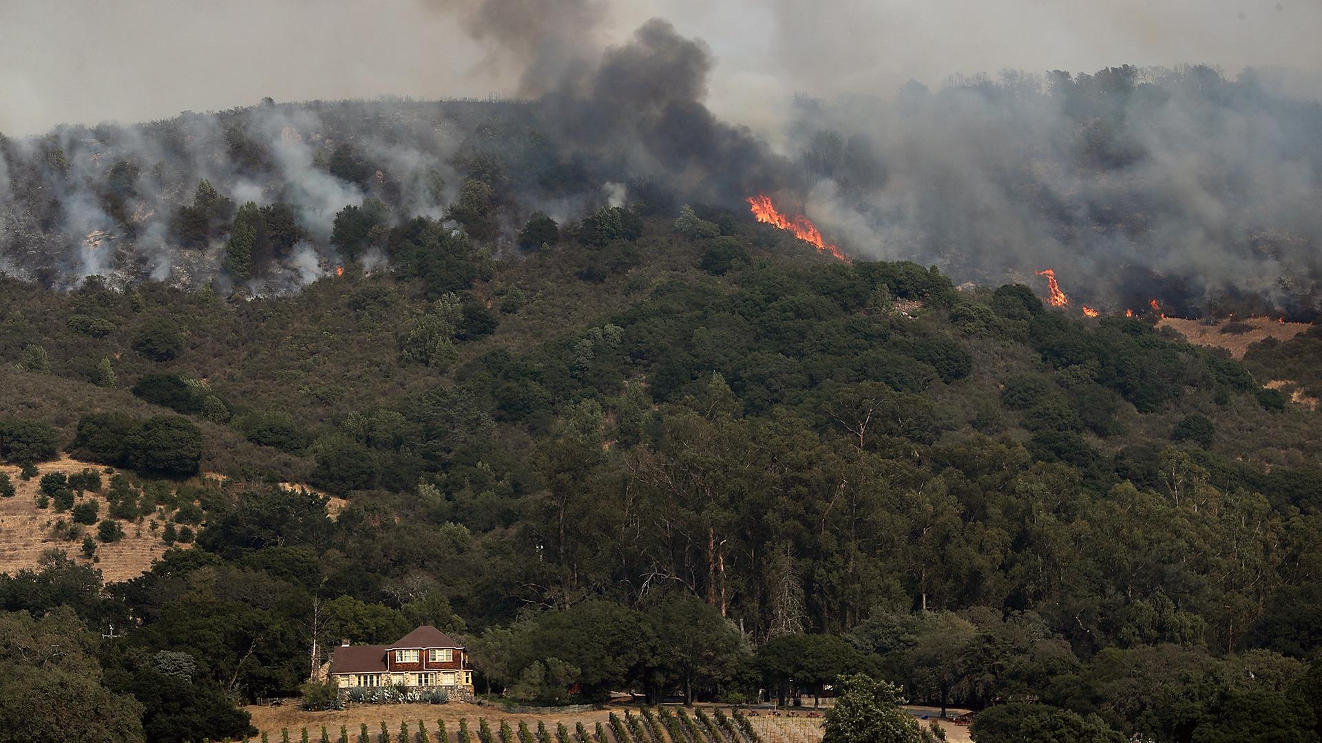 Sonoma County California Wildfire-159532.jpg48616200