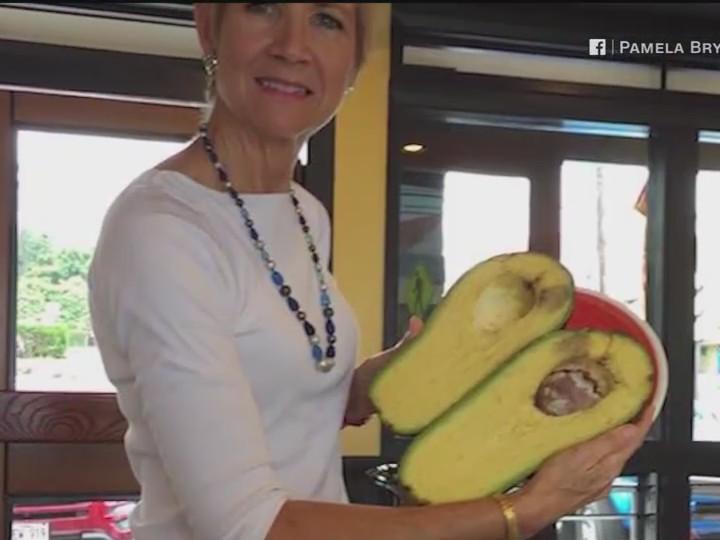 Hawaii_Woman_Finds_Massive_Avocado__Poss_0_20171207044101