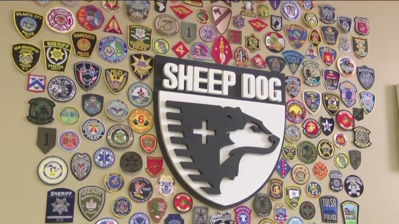 Sheep_Dog_Impact_Assistance_wants_to_Rai_0_20180702232703
