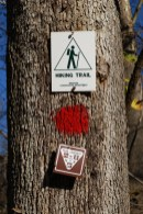 The trails are quite clearly marked with colored blazes, though in the fall leaves on the ground can disguise the trail in places.