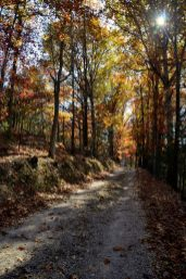 The gravel road leading from HWY A to the Busiek South Trailhead