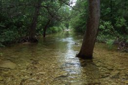 Creek crossing, Long Creek, Hercules Glades