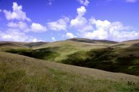 Scottish hillsides - The hills to the East of Dumyat