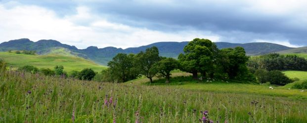 Pastoral scene of Glen Lednock, Scotland