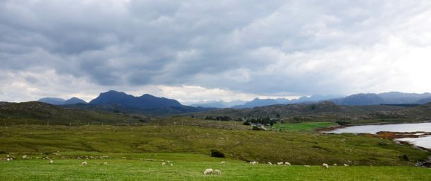 Sheep and mountains. A common combination in Scotland. Somewhere near Poolewe.